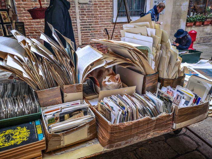 Hidden within the shelves of Libreria Acqua Alta in Venice you will not only find hoards of books but postcards, bookmarks, posters, calendars and even the odd cat relaxing here and there.