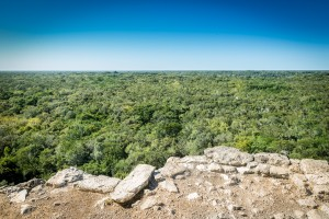 View from the top of Nohoch Mul, Coba in Mexico