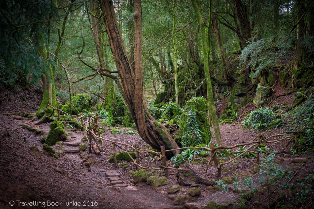 Why a Trip to Puzzlewood will make you believe in Fairytales