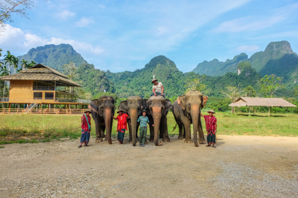 Elephant Hills, elephant experience, glamping, tents, Thailand, Khao Sok National Park, travel, travelling book junkie