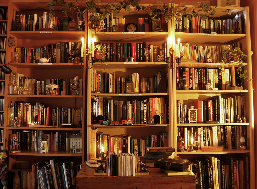 Home Library, Book Shelves, Bookcases, Books, Bookworm life