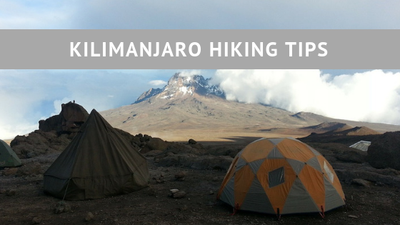 Kilimanjaro hiking tips for those who love an outdoor adventure climbing the highest mountain in Africa.