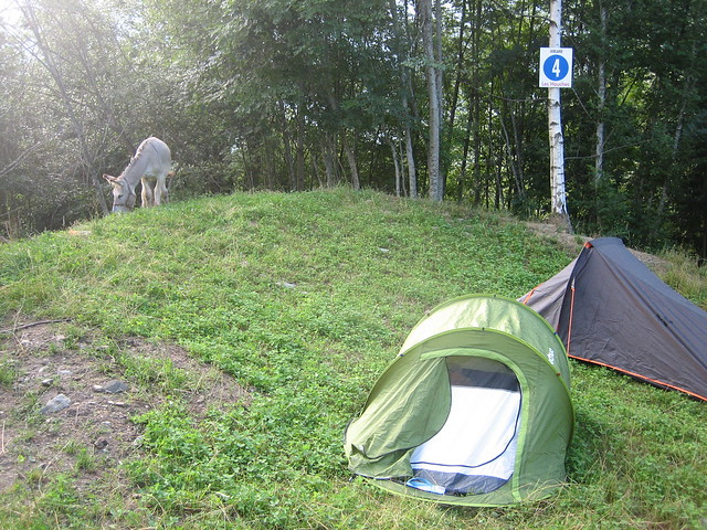 Camping Les Houches Mount Blanc hiking trails
