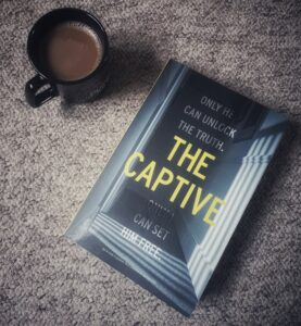 The Captive by Deborah O'Connor, a new thriller for 2021.