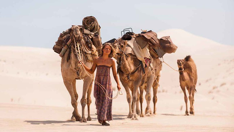Robyn Davidson and her camels walking through the Australian Desert from Alice Springs